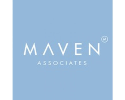 Maven Associates, a mid-market consulting firm, is seeing massive growth in private equity